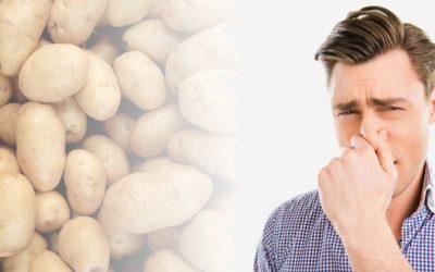 Nuisances olfactives, troubles du voisinage : le référé contre la nausée